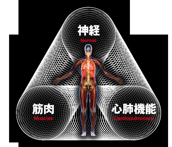 ドクタートレーニング 神経を整えるトレーニング