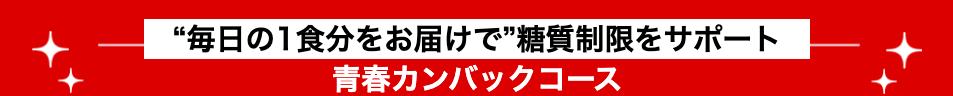 24/7ワークアウト(Workout) 料金 青春カンバックコース